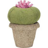 Cactus Queen Kidsdepot