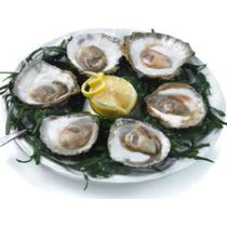 Platte oesters 6/0 (12st.)