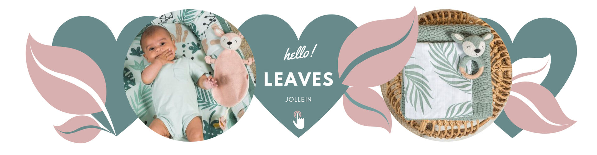 Jollein leaves
