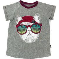 KMDB Shirt Korte Mouw 74 Tee Kek Dog