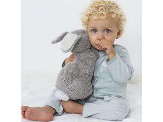 Rabbit Rio